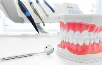 Dental model and dental tools